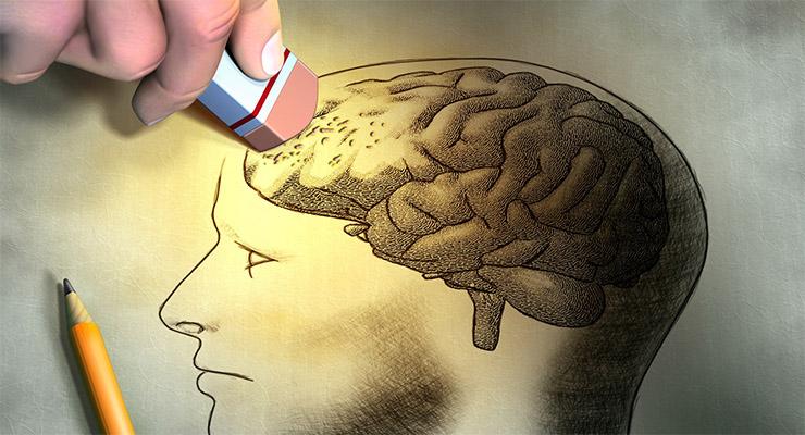 La precariedad alimentaria y la demencia | Literal